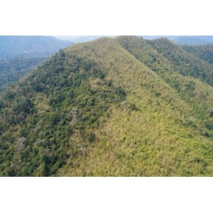 Land use change in Kuiburi national park after being inscribed onto ASEAN heritage sites list